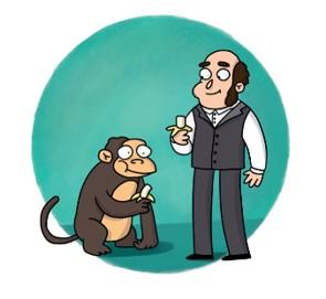 Человек и обезьяна едят бананы.